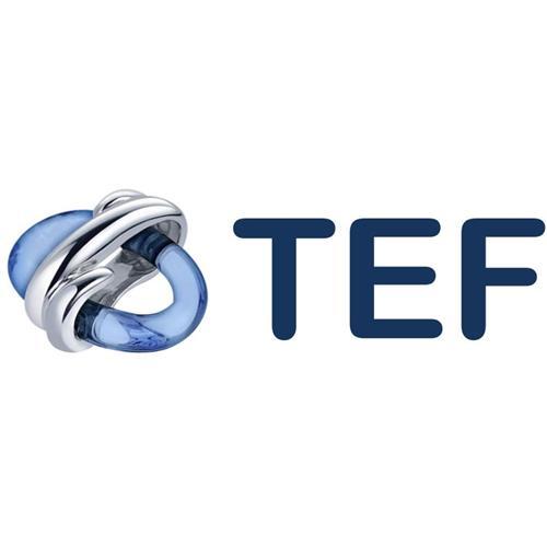 TEF, Optisch rookmelder, Analoog adresseerbaar, Exclusief isolator