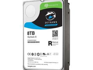 HARDDISK SkyHawk AI 8TB